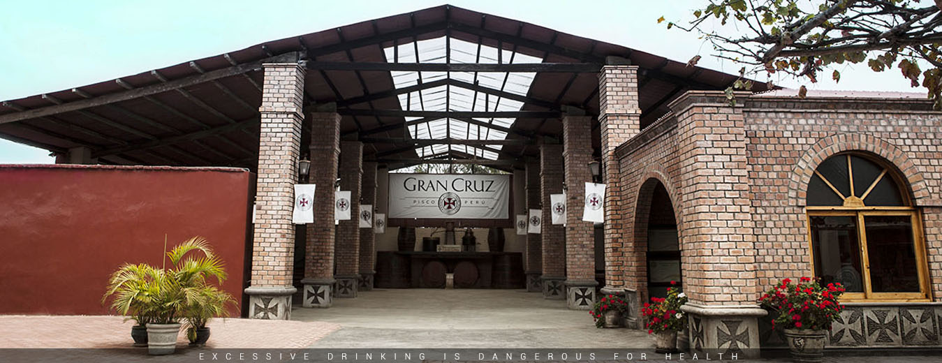 Pisco-Gran-Cruz-2014-Slider-11